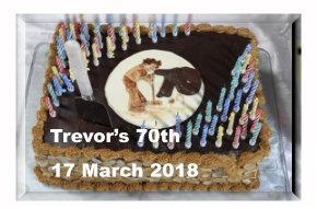 Trevor's Birthday Party
